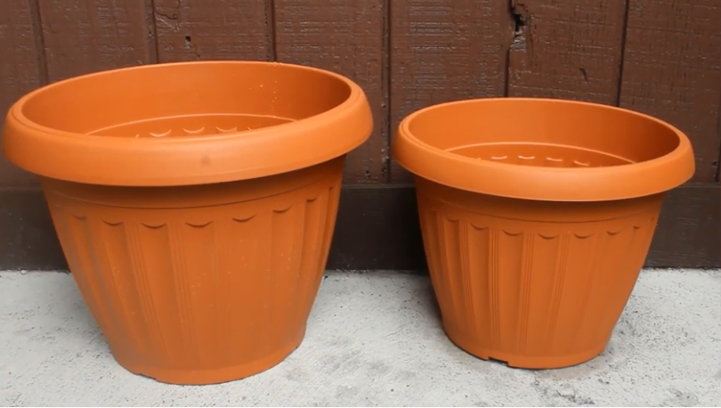 Choosing a Peppers Plant Container
