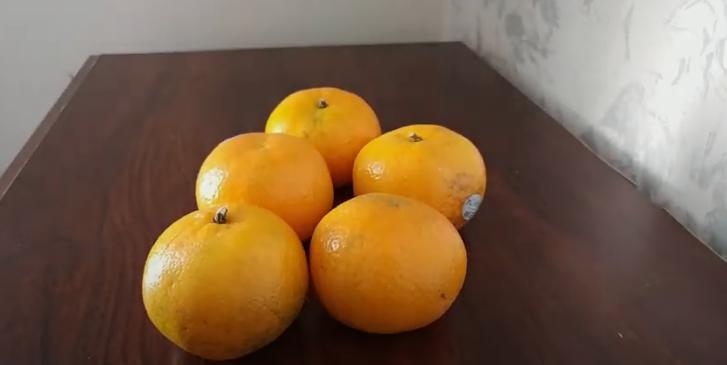 Citrus tangerina