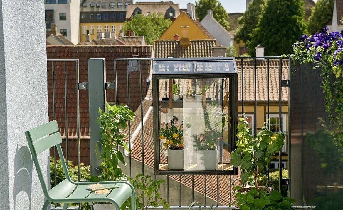 growing balcony herb garden