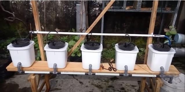sistem hidroponik DIY pasang surut