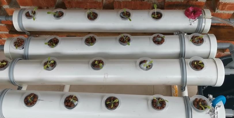DIY hydroponics systems